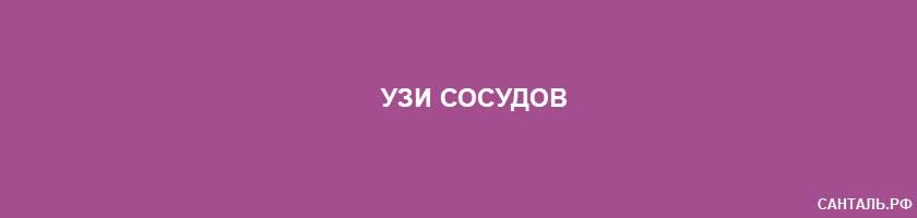 УЗИ сосудов в г.Кызыл (Республика Тыва)